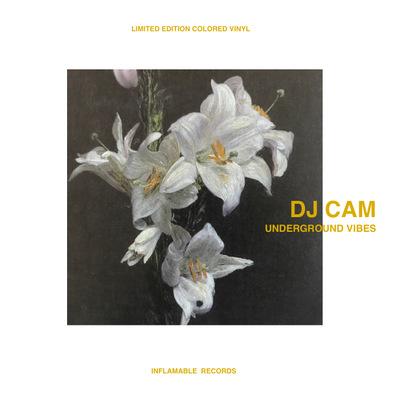 DJ Cam - Underground Vibes